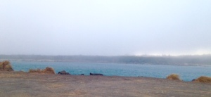 The early fog rolling into Florence over the harbor.